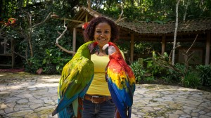 Macaw Mountain Copan Ruinas 7