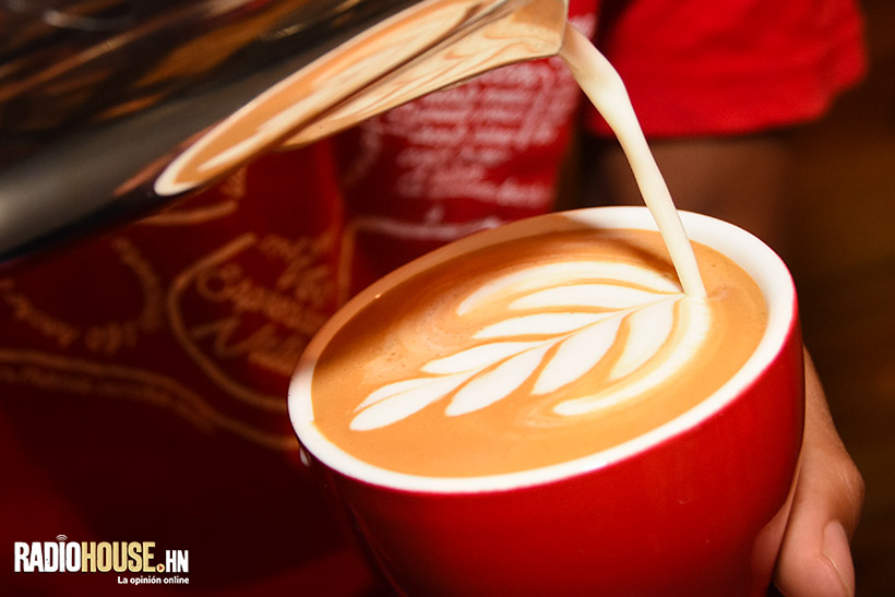 cafe-nativo-latte-art-radiohouse-8