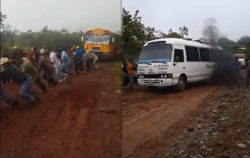 Buses en Lempira