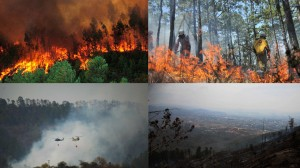 Incendios_Forestales_ABS