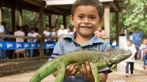liberacion-de-iguanas-honduras-radiohouse-2