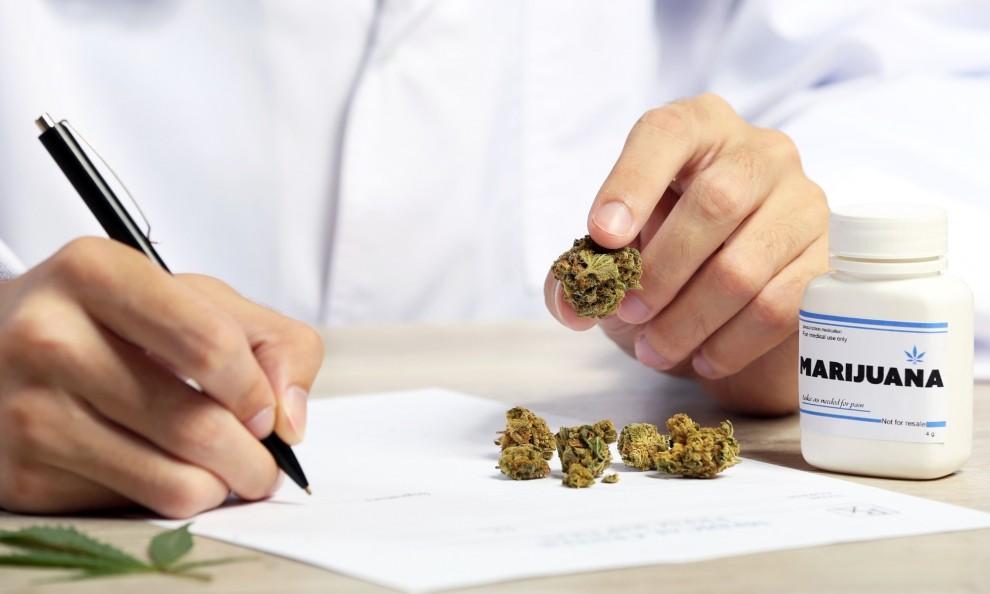 Fuente: Marihuana Medicinal