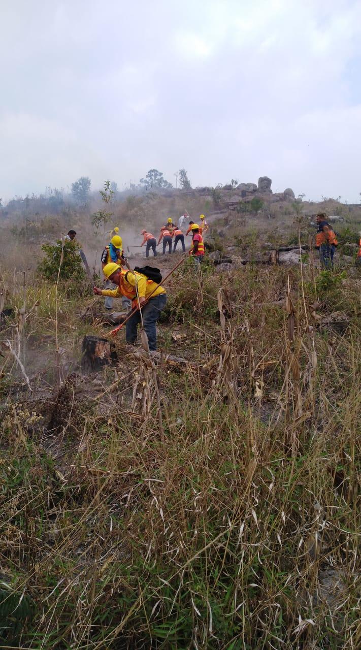 Fuente: Voluntarios Forestales Pantera