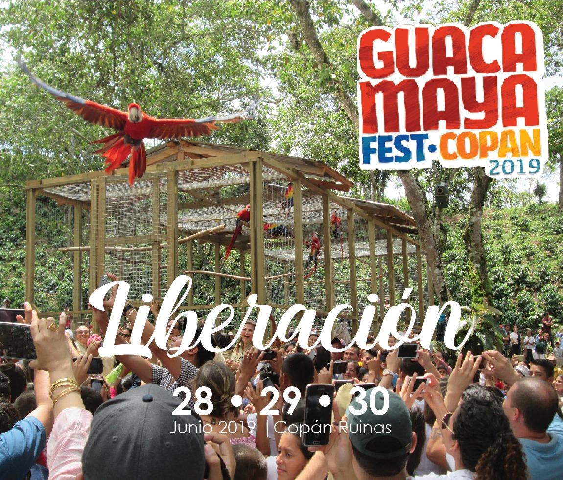 Gucamaya Fest