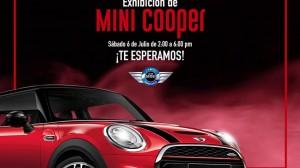 Mini Coopers
