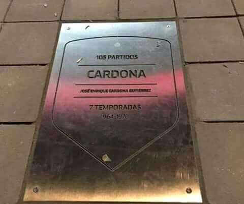 Coneja_Cardona