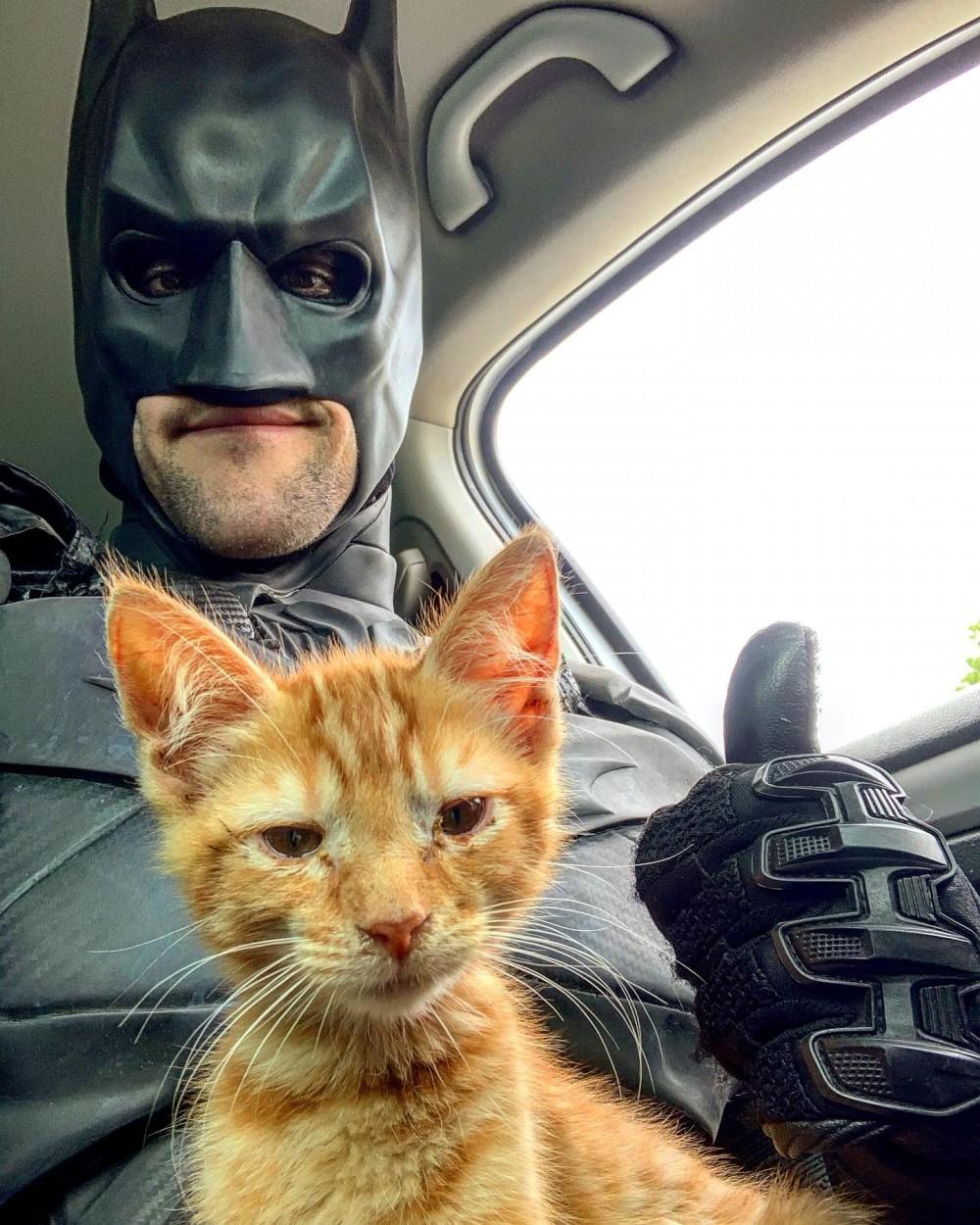 Fuente: Batman4Paws