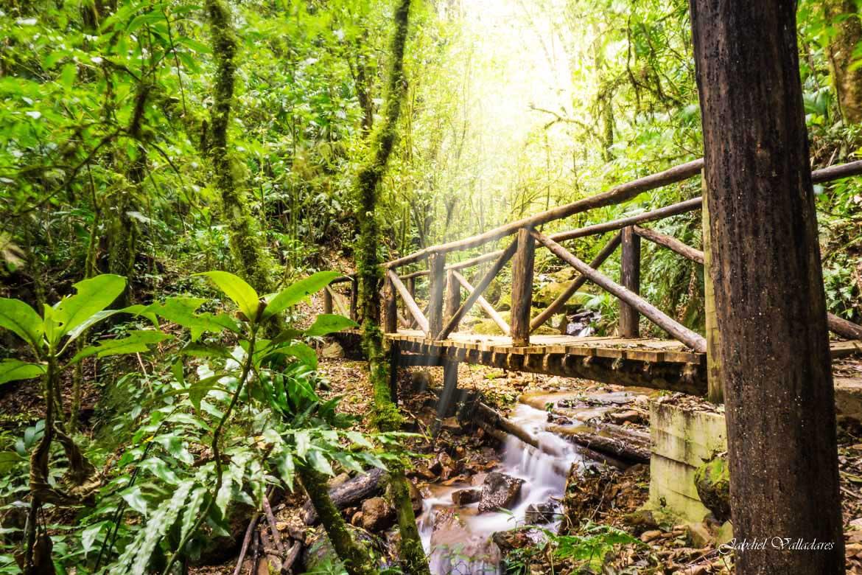 UnFinde acampando en el ecológico Parque Nacional La Tigra - RadioHouse